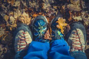 Leśny piknik Rodzinny na Dzień Ojca